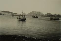 Fiskebåter på felt, ukjent sted