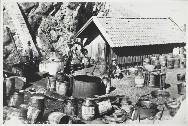 Trankokeriet Nilses på Kupsunds udde