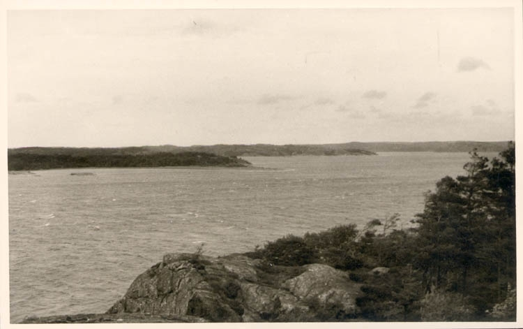 Koljefjorden