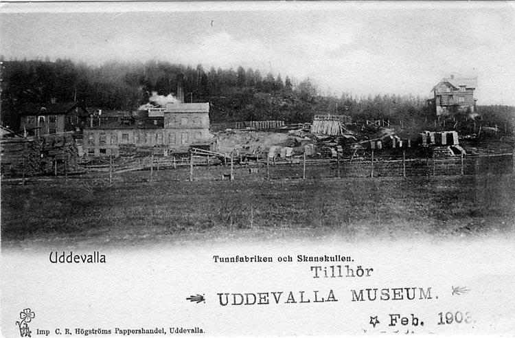 """Tryckt text på vykortets framsida: """"Uddevalla. Tunnfabriken och Skanskullen."""""""