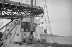 """Enligt fotografens notering: """"1975 = Malmöns skrotsten går p"""