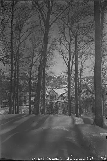 """Text på emulsionssidan (Det är orsaken till att texten är spegelvänd): """" Serie 1. No. 9 Herrgården Munkedal! 26-02-35""""."""