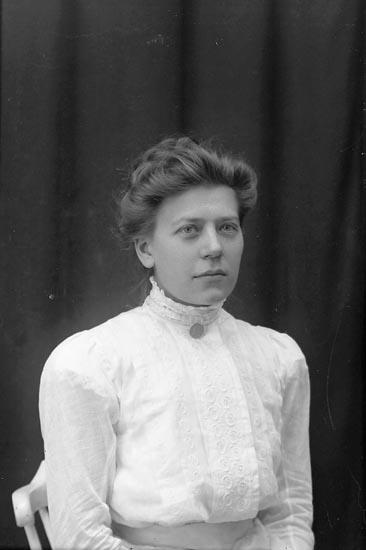 """Enligt fotografens journal Lyckorna 1909-1918: """"Abrahamsson, Mina Lyckorna""""."""