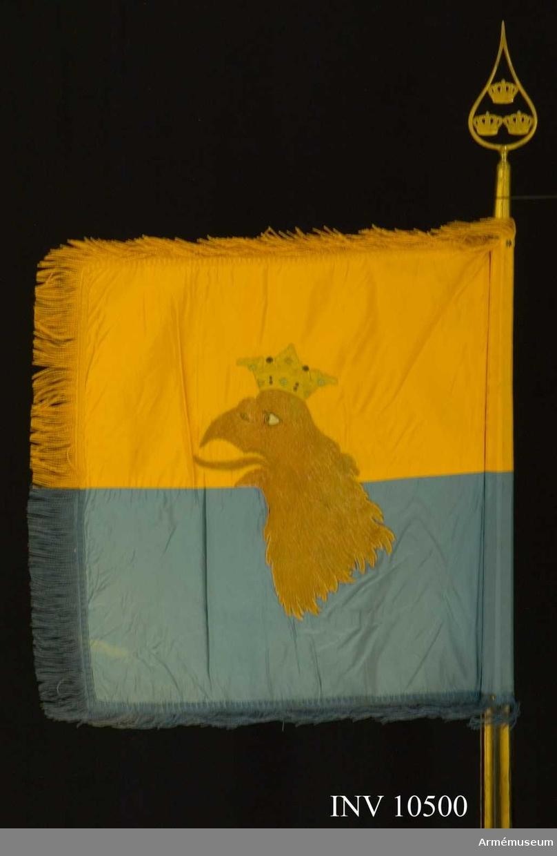 Grupp B.  Duk av taft, dubbel, delad i två halvor, den övre gul, den undre  blå. Broderade emblem. På ena (inre) sidan Carl XV:s  namnchiffer, dubbla C omkring XV, under sluten kunglig krona, allt i guld, kronan dessutom med foder i rött silke, stenar i blått och rött silke, det hela i plattsöm. På andra sidan Skånes  sköldemärke, en röd grip med öppen krona. Gripen är vänd från  stången och broderad i olika röda silken i schattersöm. Ögat i  vitt, krona i gult silke med silverpärlor och röda och blå  stenar, allt i silke i plattsöm. Kantad med sidenband och c:a 60  mm bred frans av gult och blått silke. Fäst med förgyllda spikar. Höjd 610 mm, bredd utan frans 530 mm.Stång av furu, överdelen räfflad, nedre delen slät, målad med gula räfflor. Längd från spetsen till dukens undre kant 60 mm, till handgreppet 1380 mm. Spets med tre kronor. Spetsen förvaras inne i den rulle varå standaret är rullat.