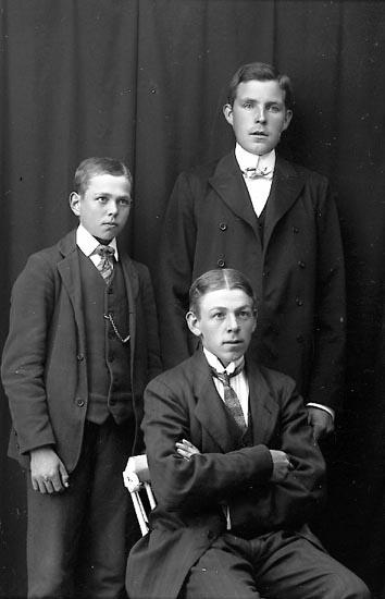 """Enligt fotografens journal Lyckorna 1909-1918: """"Rydén, Lyckorna""""."""