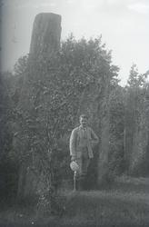 UMFA54429:1890
