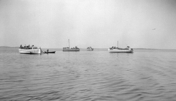 """Enligt senare noteringar: """"Skarpsillsfiske nära Styrsö. 14 Augusti 1924."""""""