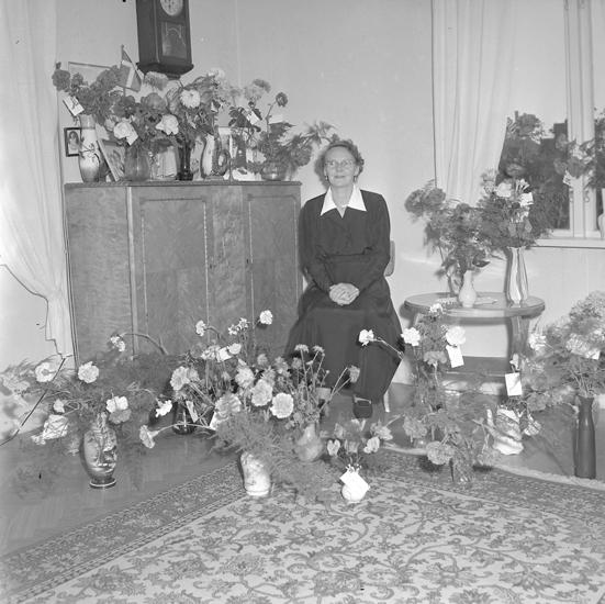 "Text till bilden: ""Fru Ellen Alexandersson, S. Kvarngatan 26. 50 år. 1957.10"""