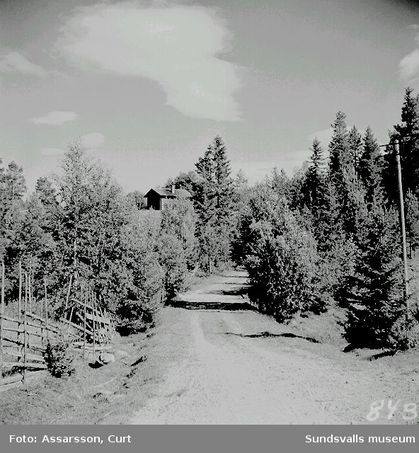 Skogstorpet Östanbäck i Vikens by.