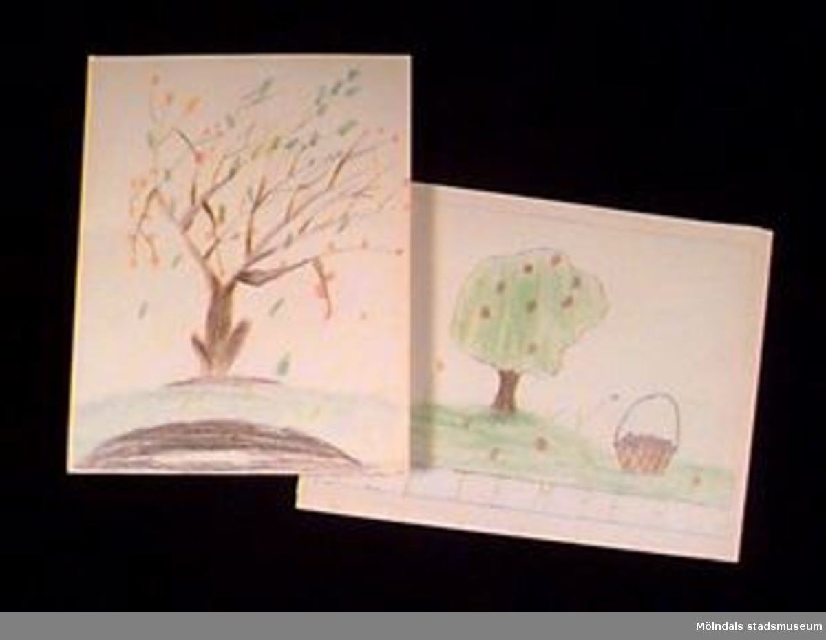 """Teckningar med trädmotiv. S.k """"månadsbilder"""" där september och oktober skildras på två av teckningarna.Givaren gick hela sin skoltid i Toltorpsskolan."""