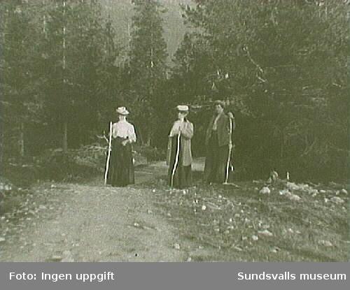 Tre kvinnor med vandringstavar, vandrar på en stig i fjällen.