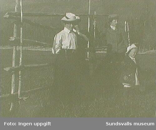 Tre kvinnor och ett barn står vid en höhässja, fjällen i bakgrunden.