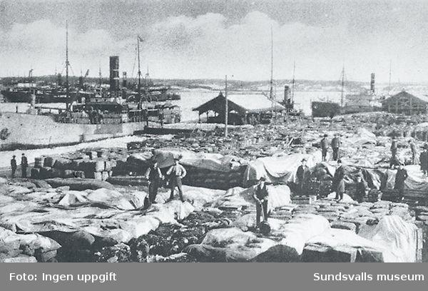 Sundsvalls hamn fylld av transitgods till Ryssland 1917.