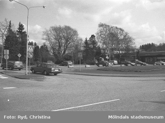 Före detta Solängs plantskola (150 arter), nu plantering i Kållered centrum 1991.