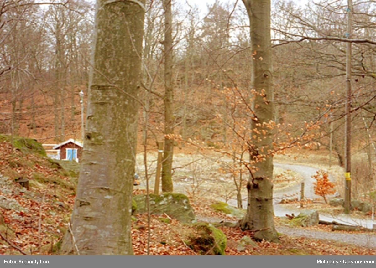 Man ser skog med en hage och ekonomibyggnad i bakgrunden, tillhörande Gunnebo slott.