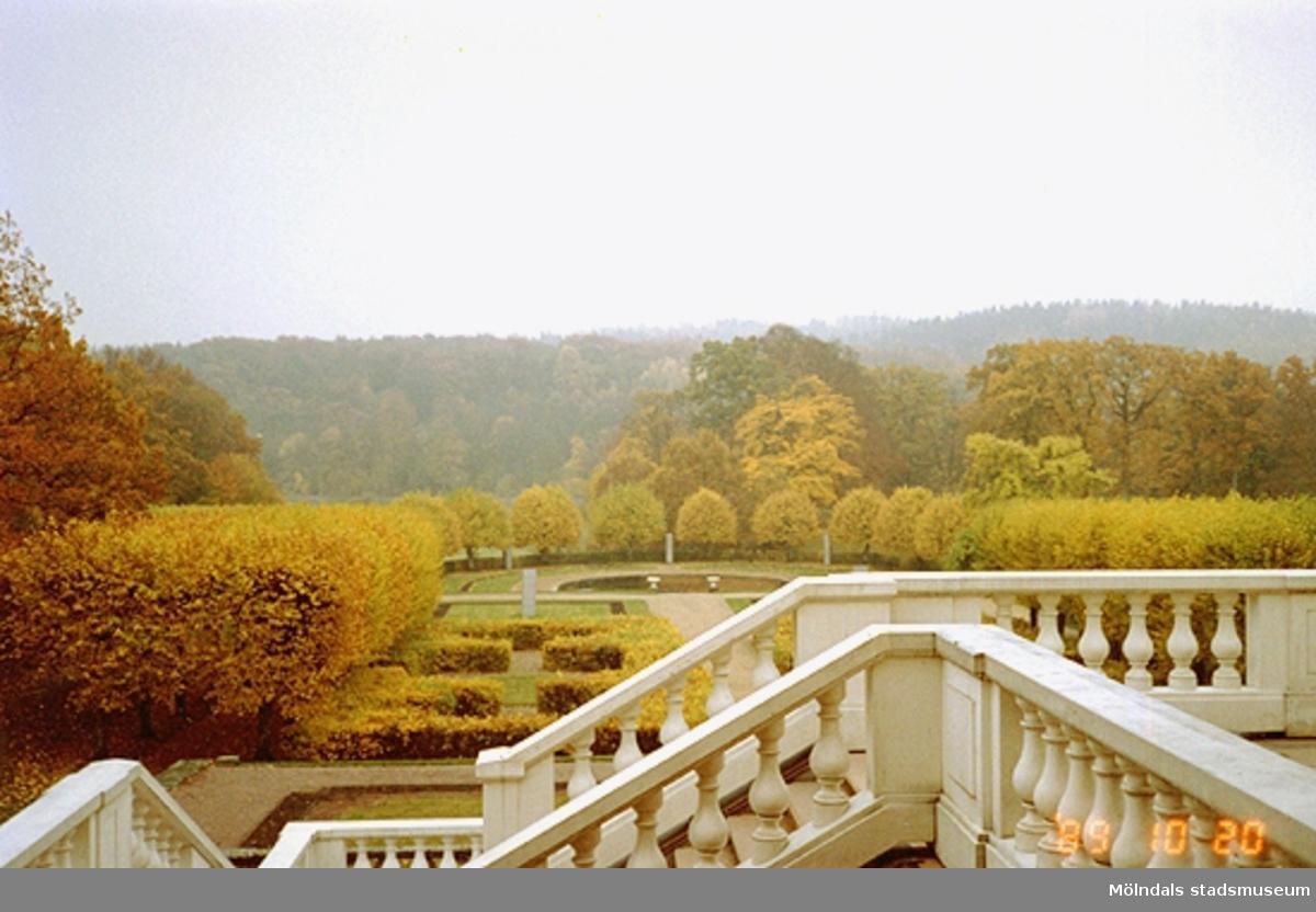 Utsikt mot skogen och parken från trappan.