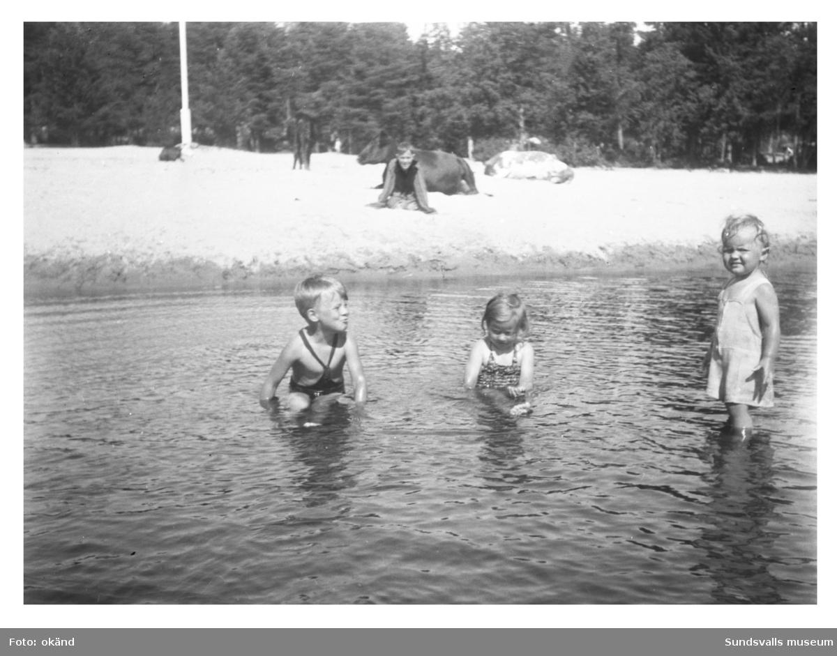 Badstranden i Tranviken. Korna ligger och idisslar och barnen badar. Rolf Dahl siter i sanden och kusinerna Benny Lindqvist, Margareta Lindqvist och Viveca Söderström tar sig ett dopp i det långgrunda vattnet.