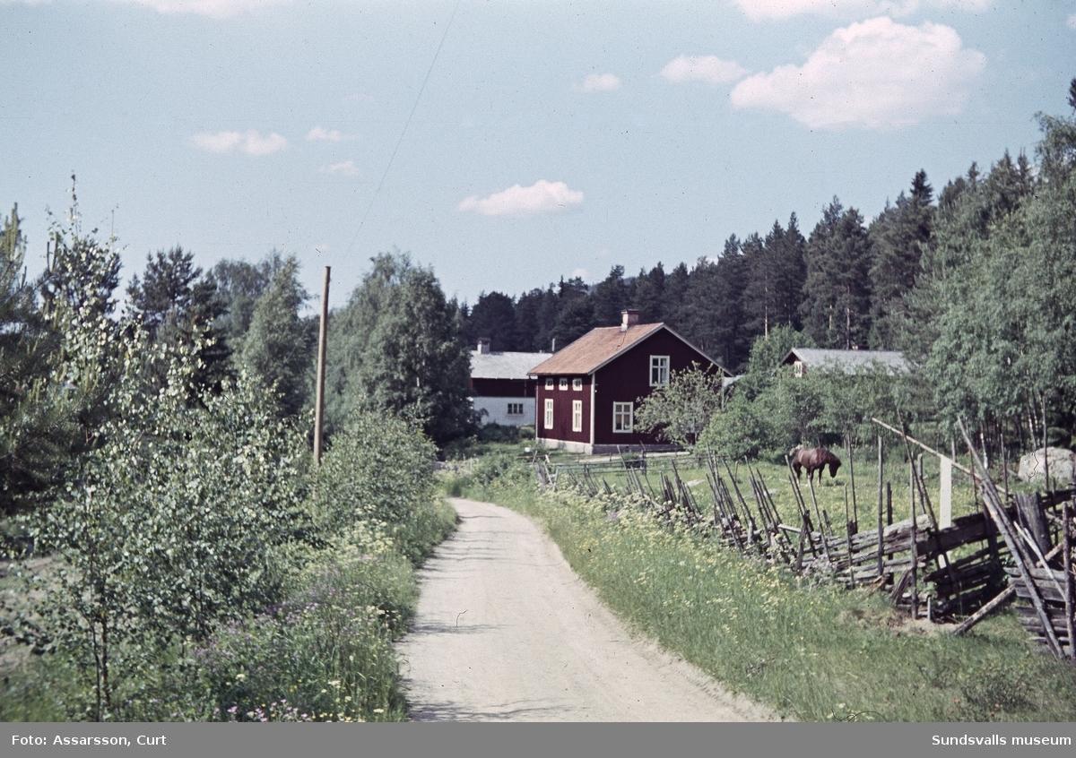 Gamla landsvägen, Borgsjö.