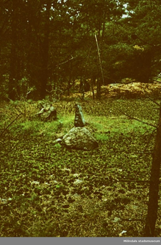 Stenblock på stig mot Djursjön.