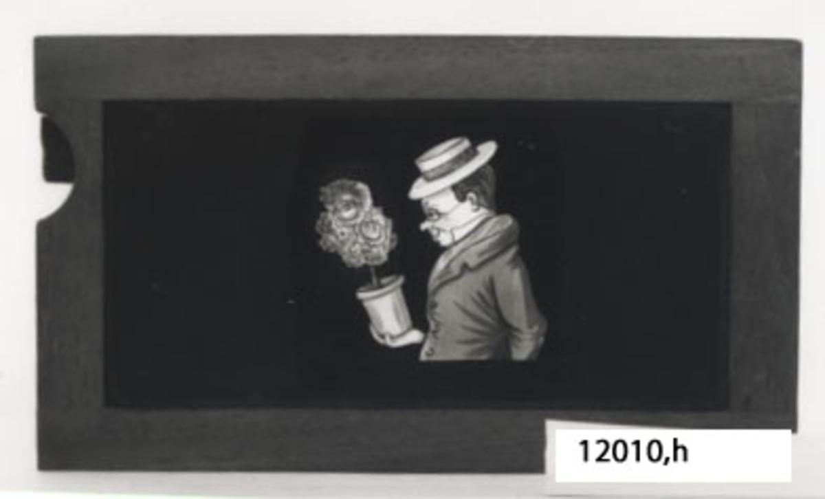 Glasbild till skioptikonappparat.målad glasskiva .Rektangulär träram med infattad glasskiva med motiv: Man med blomkruka i handen, blommar skuftar till dansös.