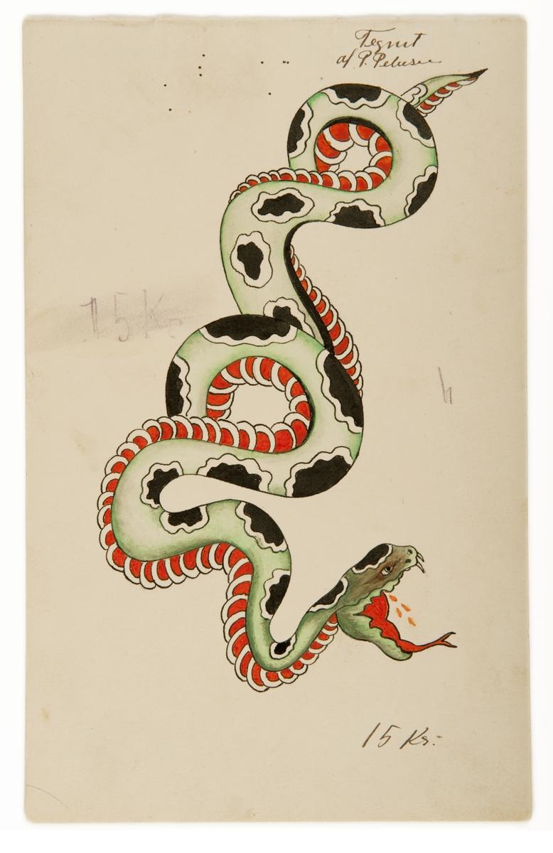 Tatueringsförlaga. En slingrand orm med svarta fläckar och öppet gap.