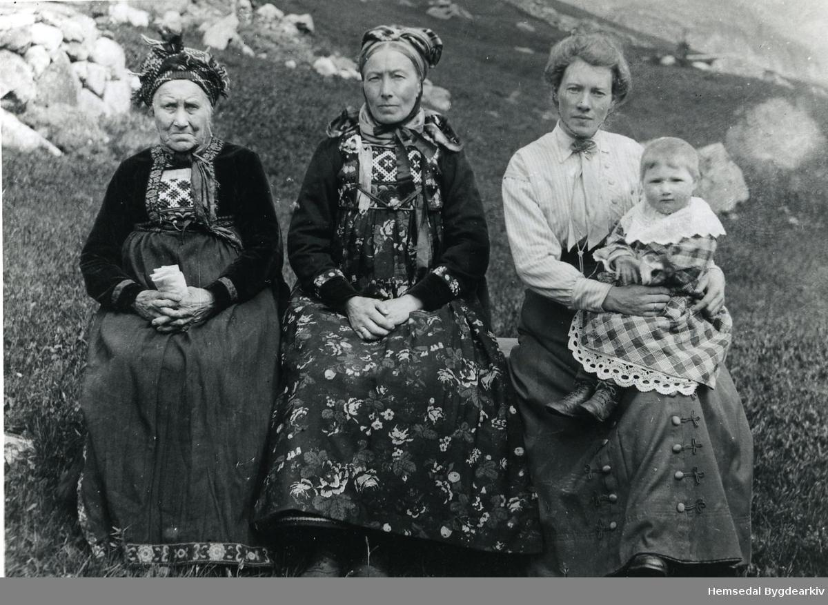 Venåsbakko Nordre i Hemsedal i 1916.  Fire generasjonar. Frå venstre: Helgæ (Helga)  Venåsbakko, Birgit Venåsbakkofødd 1865 og den nesteldste av døtrene til Helga;  Anne Venåsbakko, fødd 1894;  og Olga Venåsbakko, fødd 1915. Helga fekk 4 søner og 4 døtrer. Sønene reiste til USA, medan døtrene vart buande i bygda og gifta seg der.