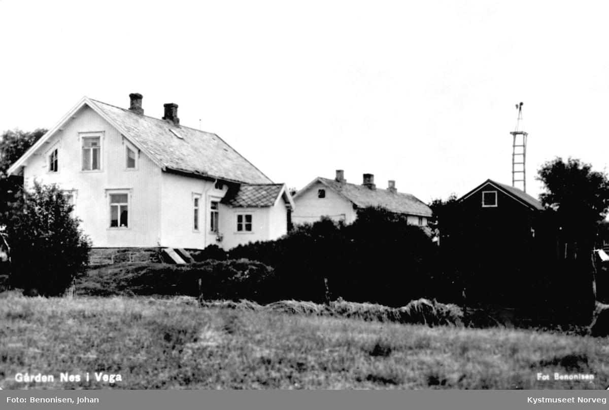 """Gården """"Nes"""" i Vega Kommune"""