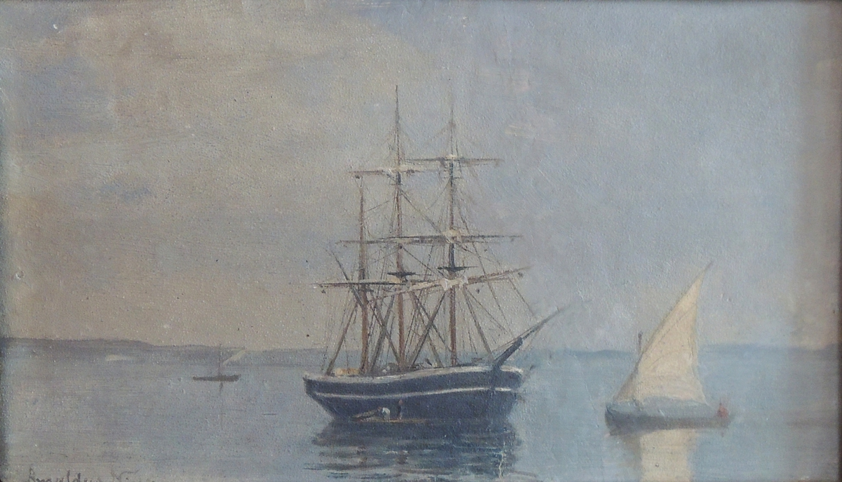 Seilskute og seilbåter.