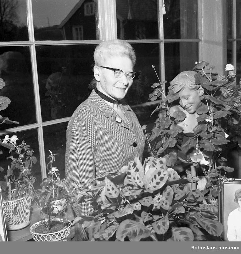 Fotograf Ingeborg Enander i sin dagljusatelje, Stenungsund, år 1960