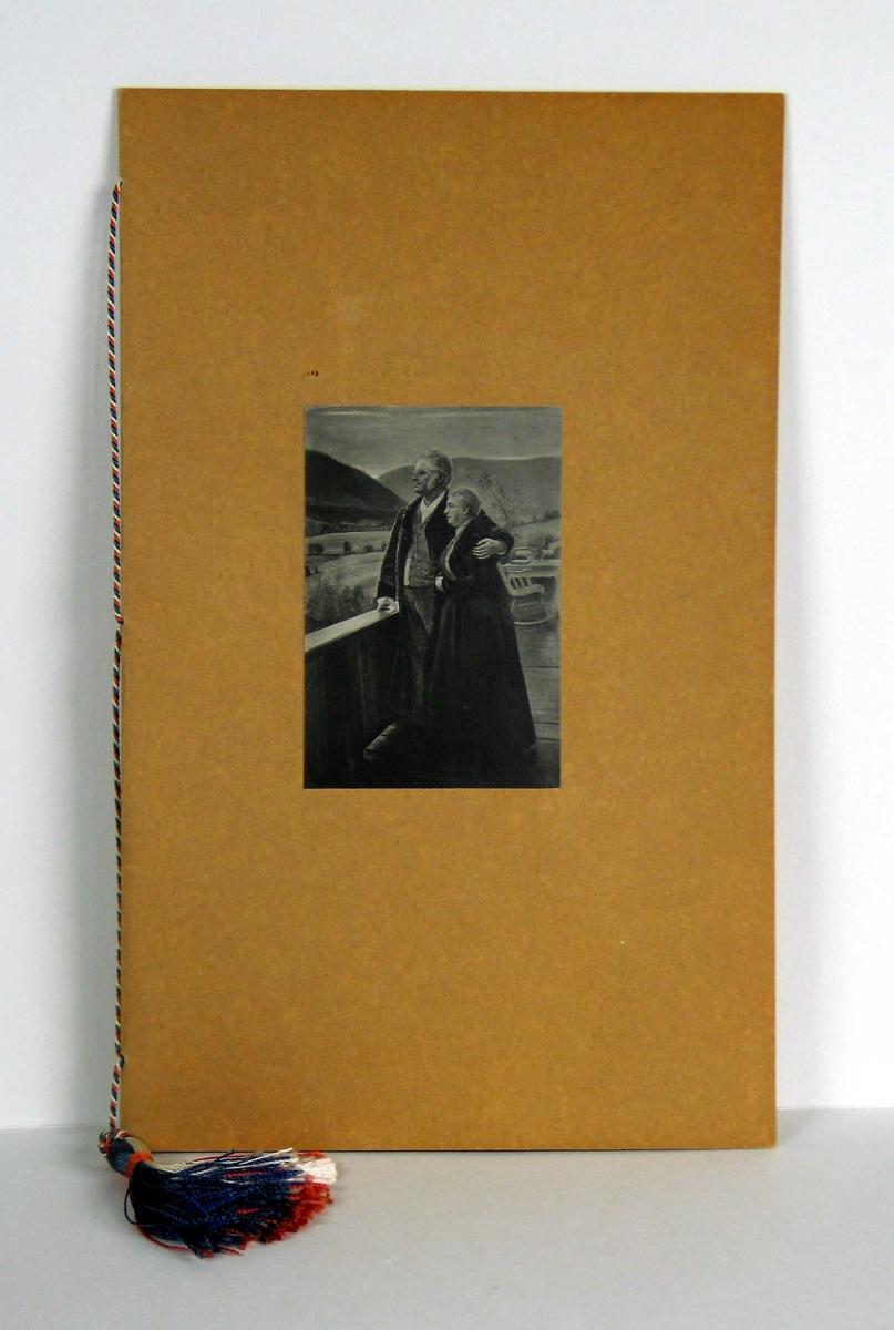 Innbundet adresse med foto (etter maleri) på forsiden. Kaligrafert tekst på tre doble ark som holdes sammen med silkesnor mot pappomslag. Silkesnoren har de norske fargene.