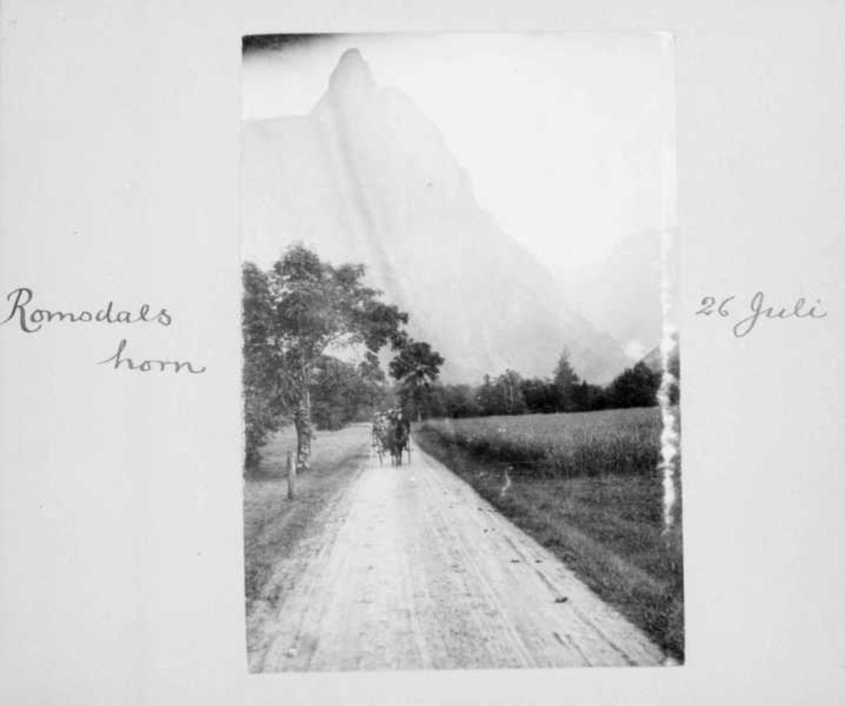 Album, fjell, veg, hest, vogn