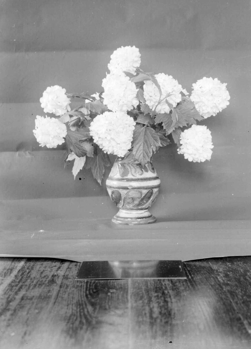 Vase med blomster. Sneballer.