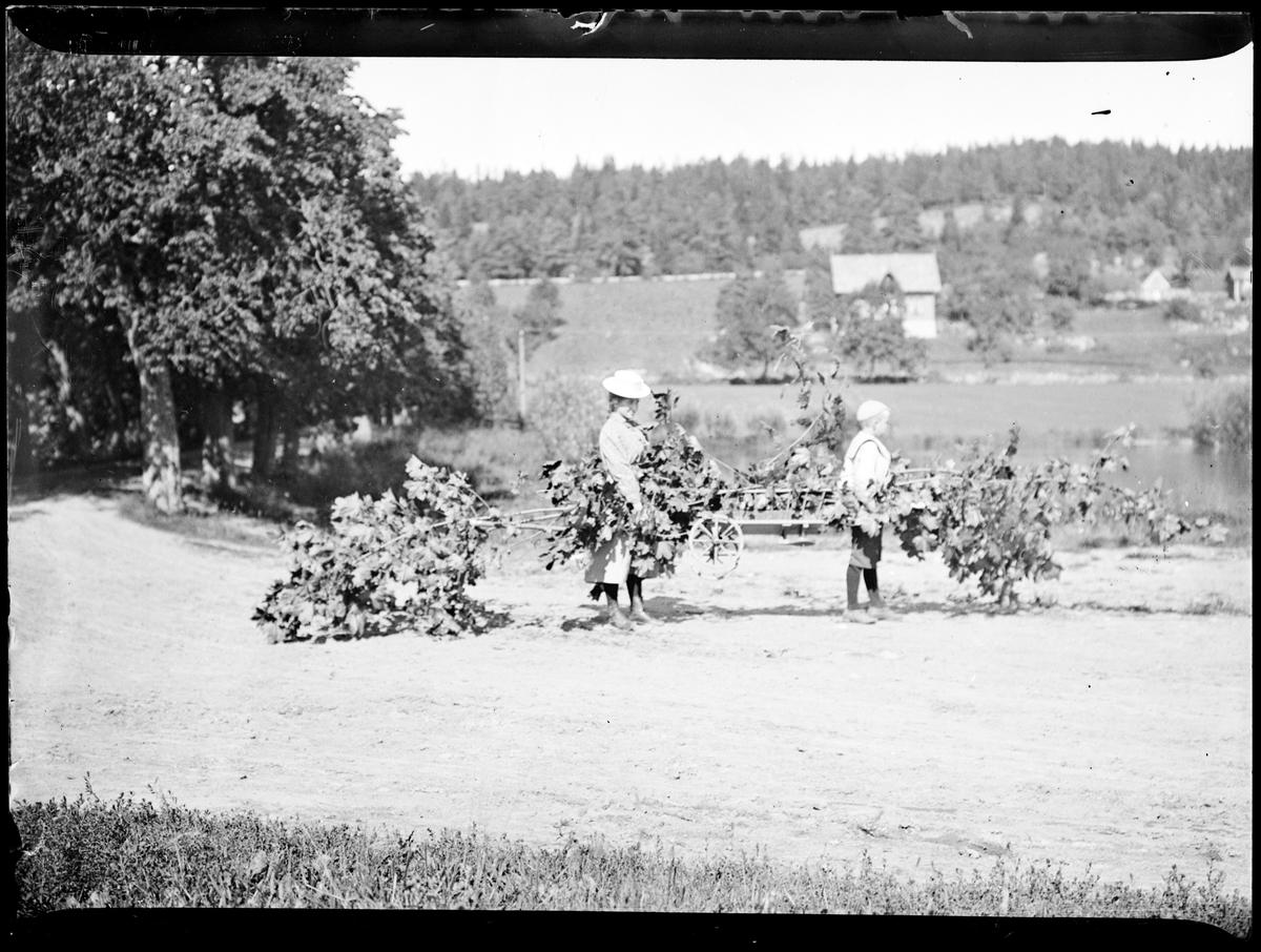 En dame og en gutt bærer på løvgrener ved en vei med allé. Skog og hus skimtes i bakgrunnen.
