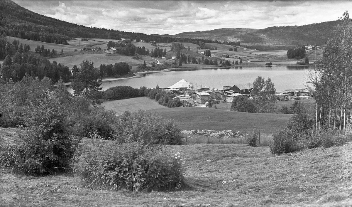 Landskap. Sagbruk ved vann eller elv.