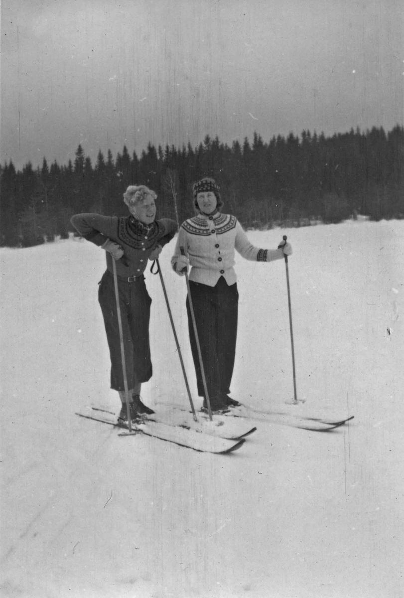 Skitur.