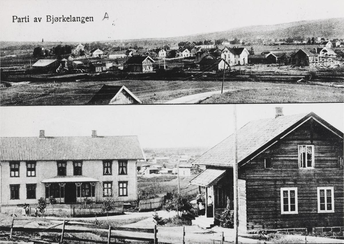 Tettstedet Bjørkelangen m/bolighus og jernbanestasjonen.