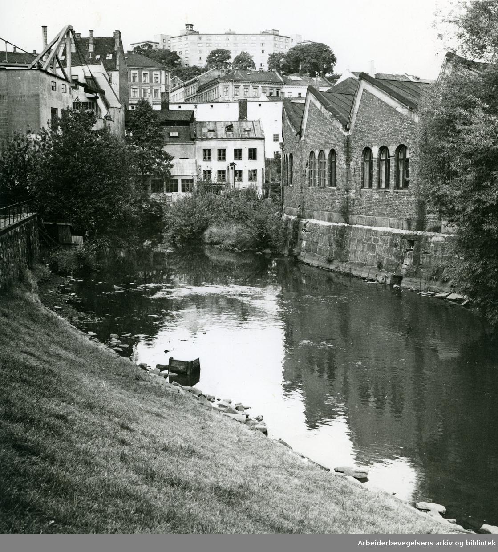 Akerselva omtrent ved Nedre gate. Midt på bildet sees bygninger tilhørende Iduns gate og Maridalsveien. Øverst sees noen av funkisbygningene i Westye Egebergs gate, .september 1961