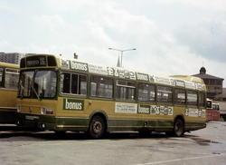 Busser, Ing. M.O. Schøyens Bilcentraler (SBC) buss nr. 105 p