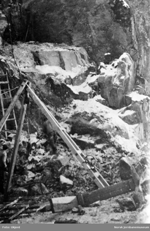 Arbeid med en stubbebryter ved Berghammeren, pæl 2243, fra nord