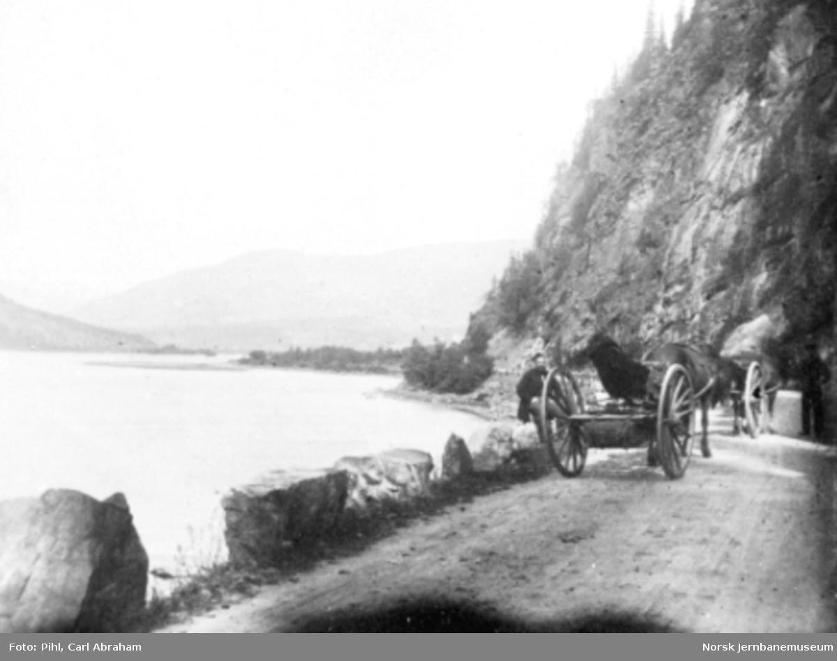 Hest med vogn på landevegen ved Elstad i Gudbrandsdalen