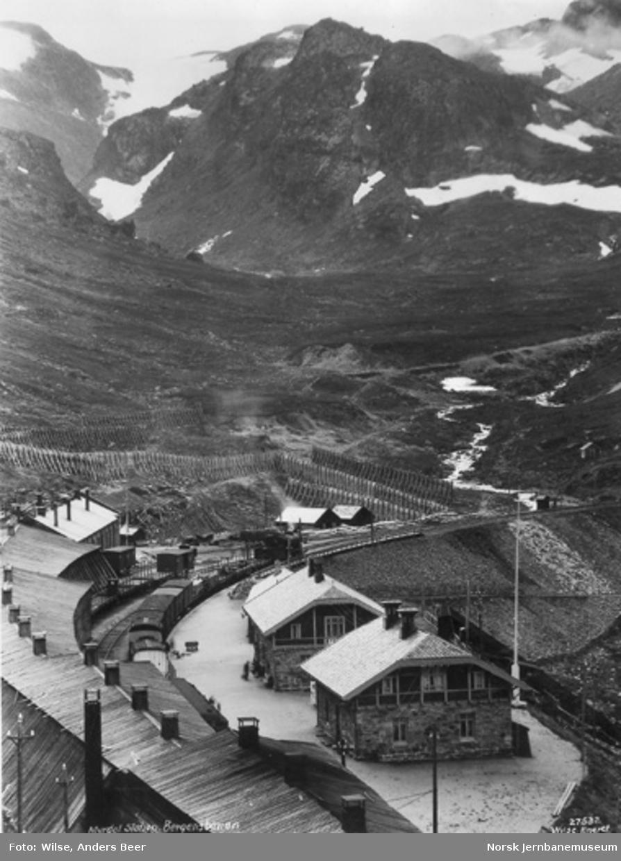 Myrdal stasjon : oversiktsbilde, vestgående godstog på stasjonen