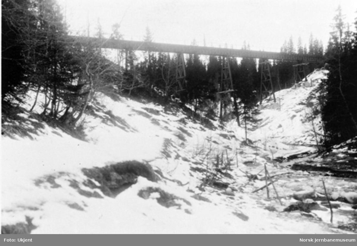 Røttesdal viadukt : ferdig bru