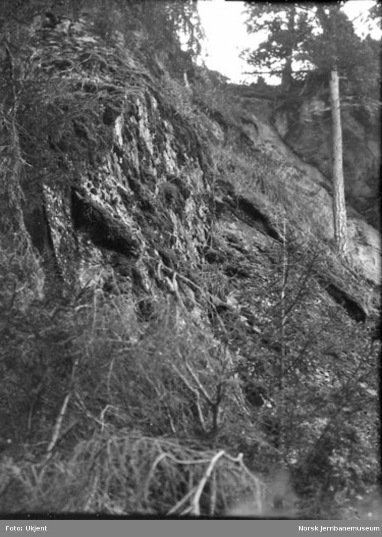 Sprukket fjell i Årneslien ved Losnavannet