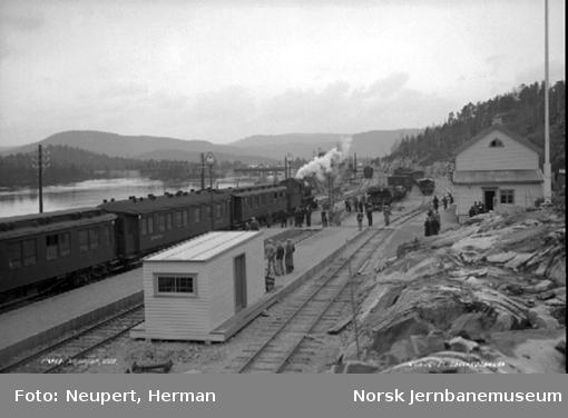Pressetoget Oslo-Arendal ankommer Nelaug stasjon