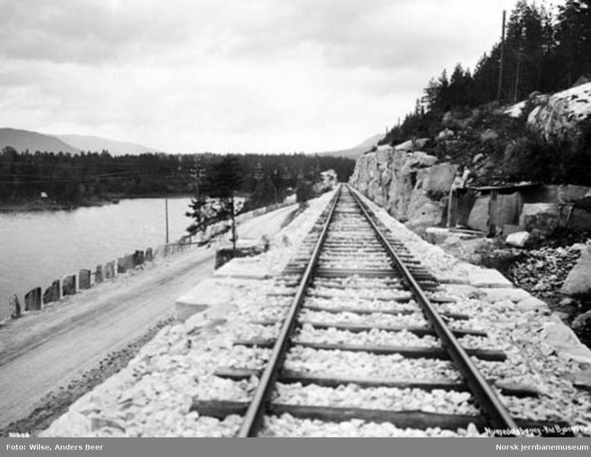 Numedalsbanen ved Bjørnerud