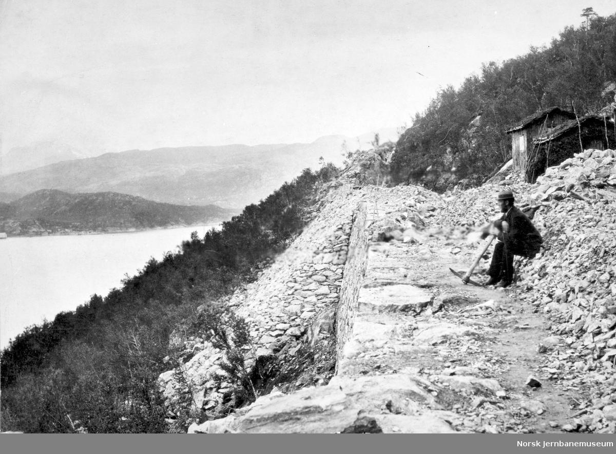 Ferdigplanert parti mellom Narvik og Djupvik med Ole W. Lund i forgrunnen