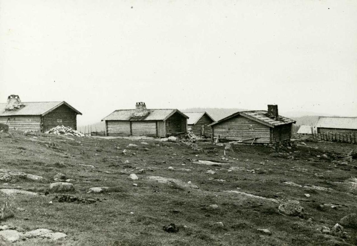 Nyseter, Feiring, Eidsvoll, Akershus. Setertun sett fra baksiden.